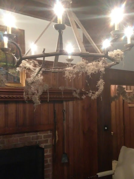 rustic chandalier draped in spanish moss